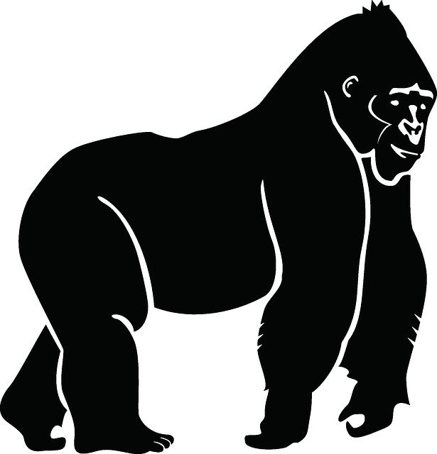 Handprint clipart gorilla Gorilla Animal Image Ape Animal