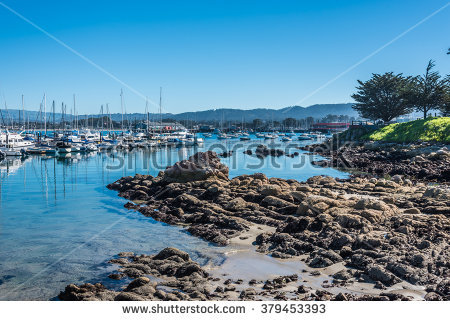 Harbor clipart bay Monterey clipart Monterey Download drawings