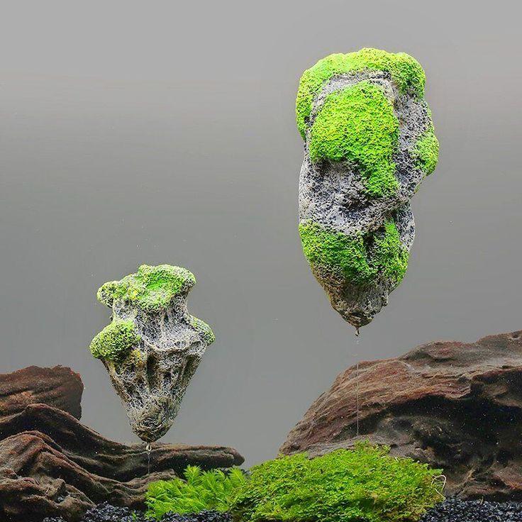 Hard Rock clipart aquarium stone Soil about Aquarium ideas Floating