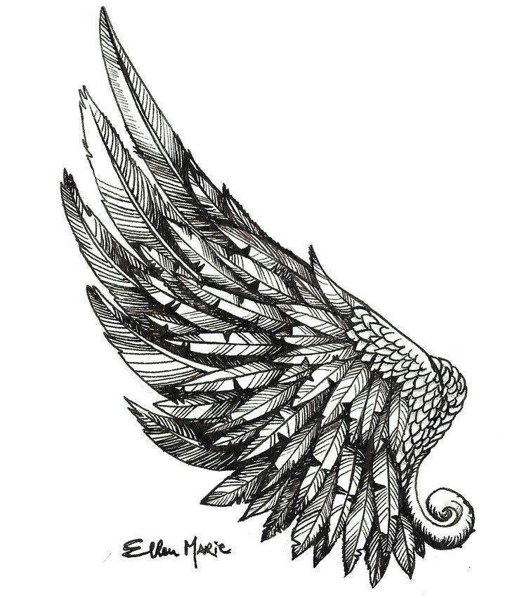 Drawn brain wing #5