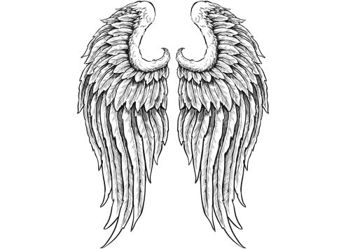 Wings clipart drawn Of on wings ideas Clip