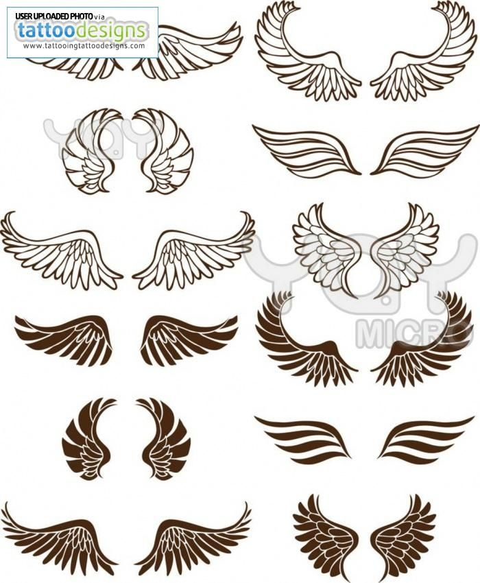 Hard Rock clipart feather wing Wing 293  & on