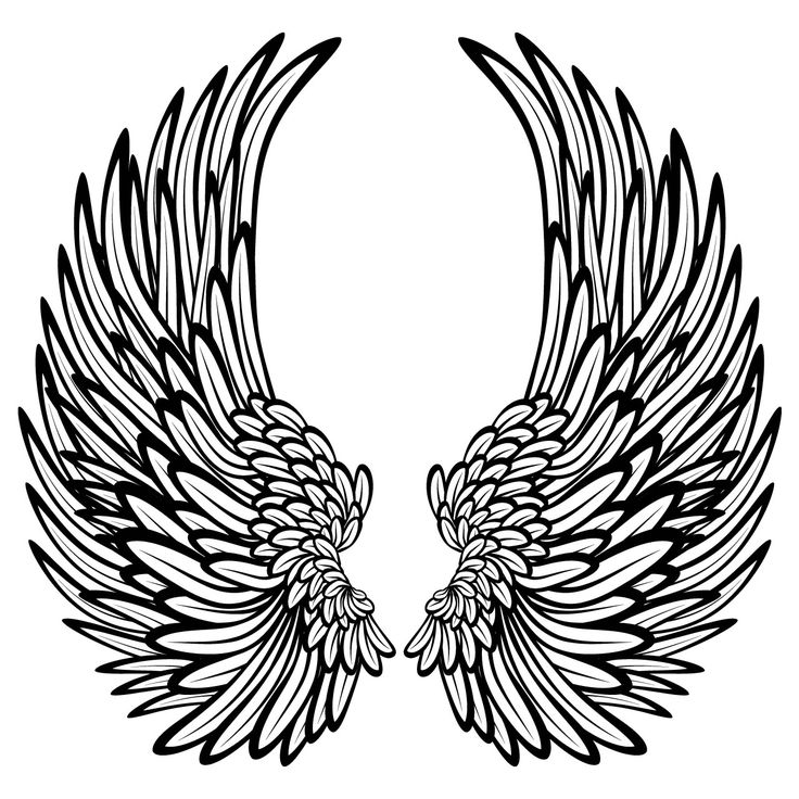 Hard Rock clipart feather wing Wings 16 wings about Details