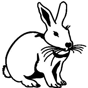 Hare clipart 67 art hare Clipart hare