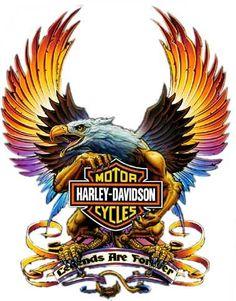 Harley Davidson clipart eagle About Harley harley Discover skull