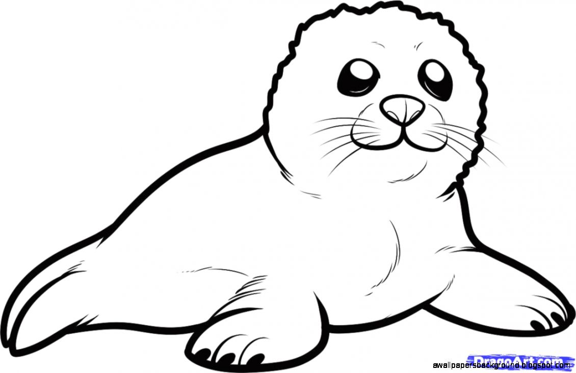 Harp Seal clipart Clipart Seal Download Download #3