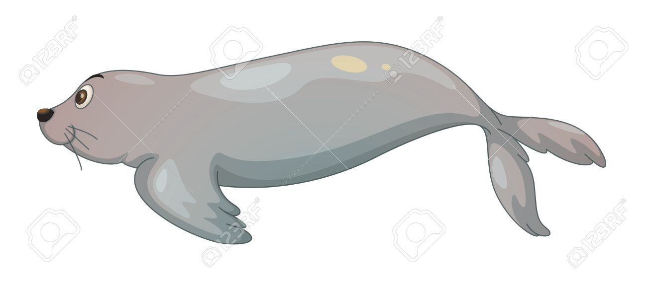 Harp Seal clipart Clipart Seal Download Download #6