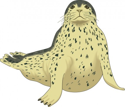 Harp Seal clipart BW Seal Download Seal Harp