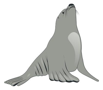 Sea Lion clipart arctic seal #3