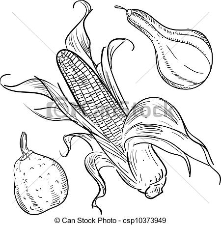 Harvest clipart gourd And vector  gourds Art