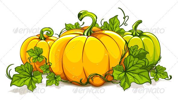 Drawn pumpkin vine Plant Pumpkin Pumpkin cliparts Clipart