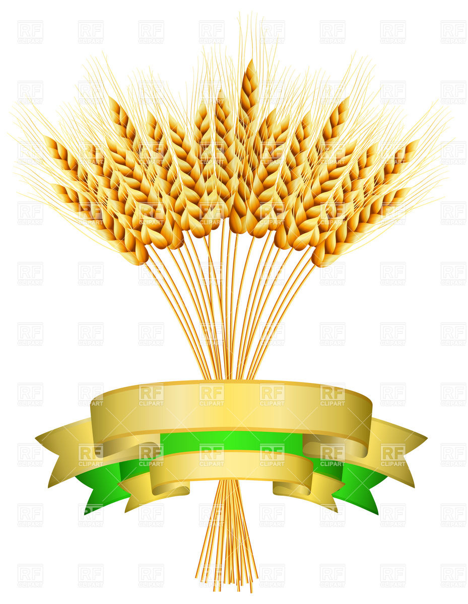 Barley clipart wheat straw Harvest Free The Harvest Clipart