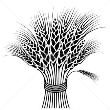 Grain clipart sheaf wheat Harvest Wheat Clip Art Wheat