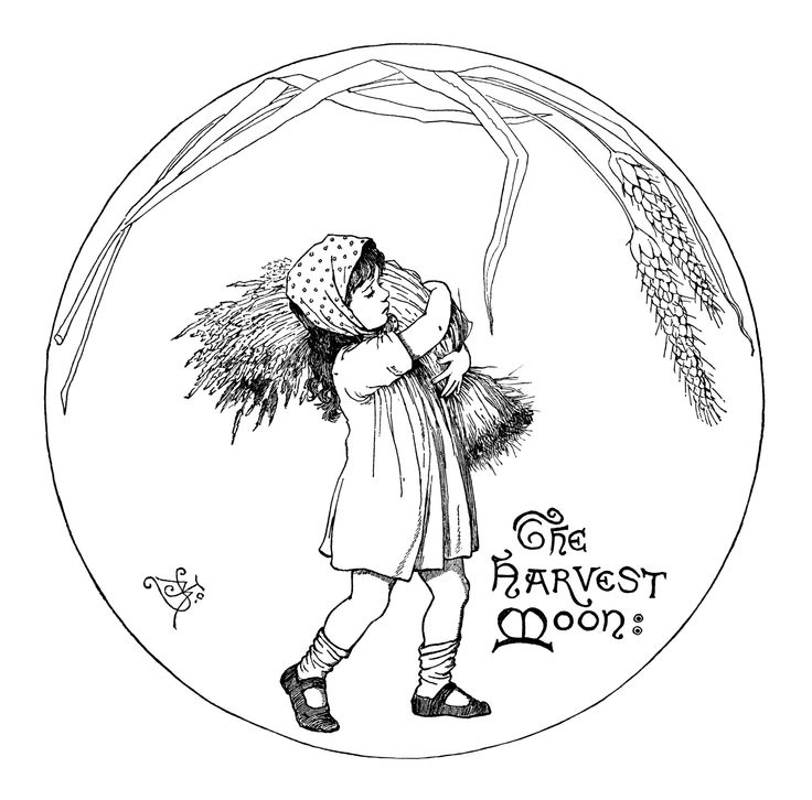 Harvest Moon clipart black and white Kinders black carrying fall best