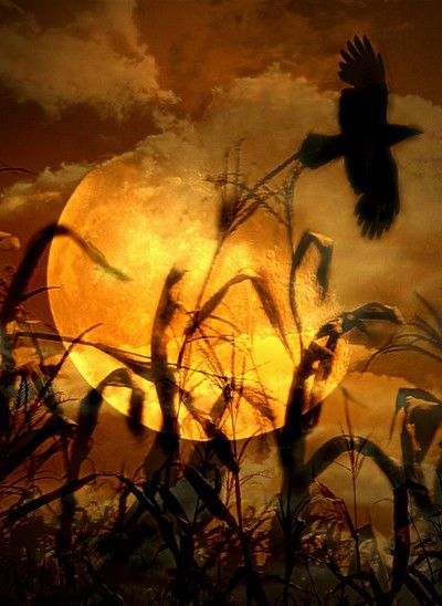 Harvest Moon clipart equinox Ideas equinox best harvest moon