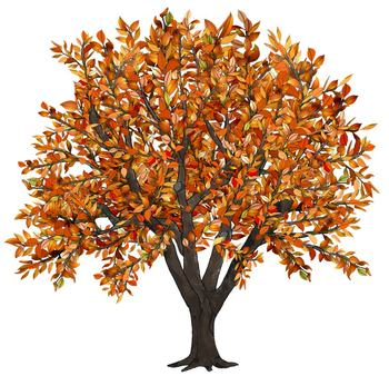 Apple clipart thanksgiving Tree art Clip Clip Tree