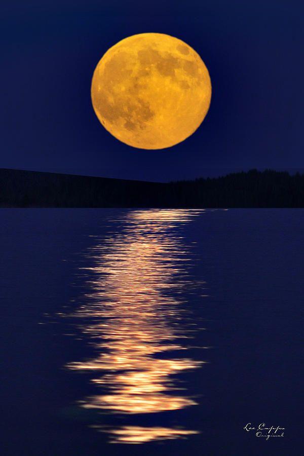 Harvest Moon clipart first quarter moon Pinterest best 191 on Moons