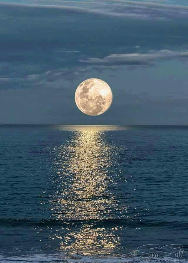 Harvest Moon clipart first quarter moon Moon 16 over moon 25+
