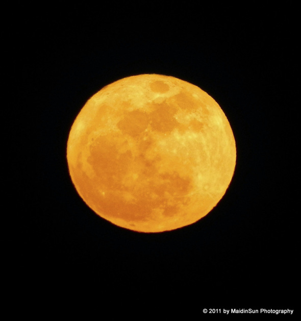 Harvest Moon clipart full moon March water moon Bogs Photography