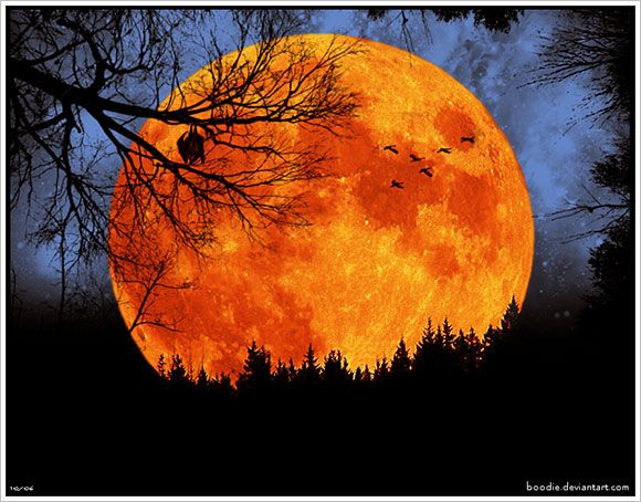 Harvest Moon clipart full moon Best class this moon Harvest