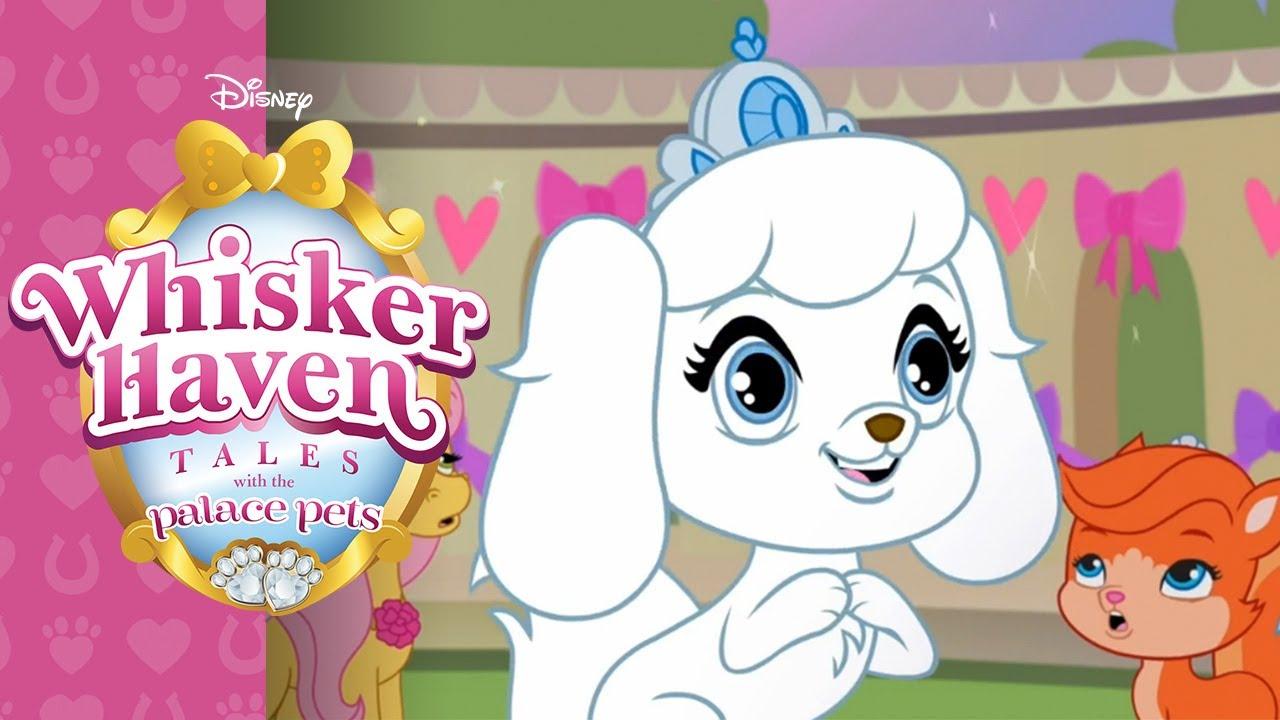 Haven clipart animated Whisker Whisker ღ✓ 2 Haven