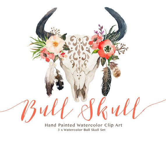 Haven clipart bull Bull skull GraphicSafari art GraphicSafari