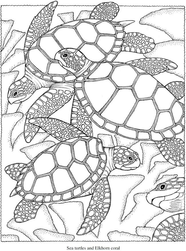 Haven clipart colouring Pinterest Book Coloring to 94
