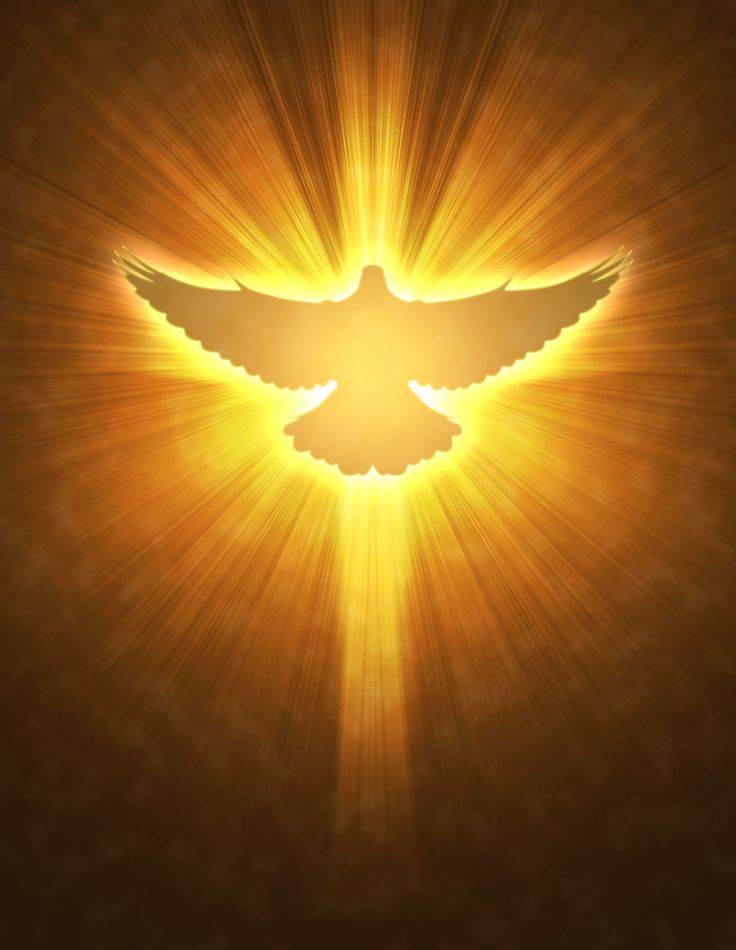 Haven clipart holy ghost Symbol comes outline down dove