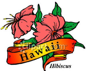 Hawaii clipart hawaii state flower Of the Flower Hawaii Clipart