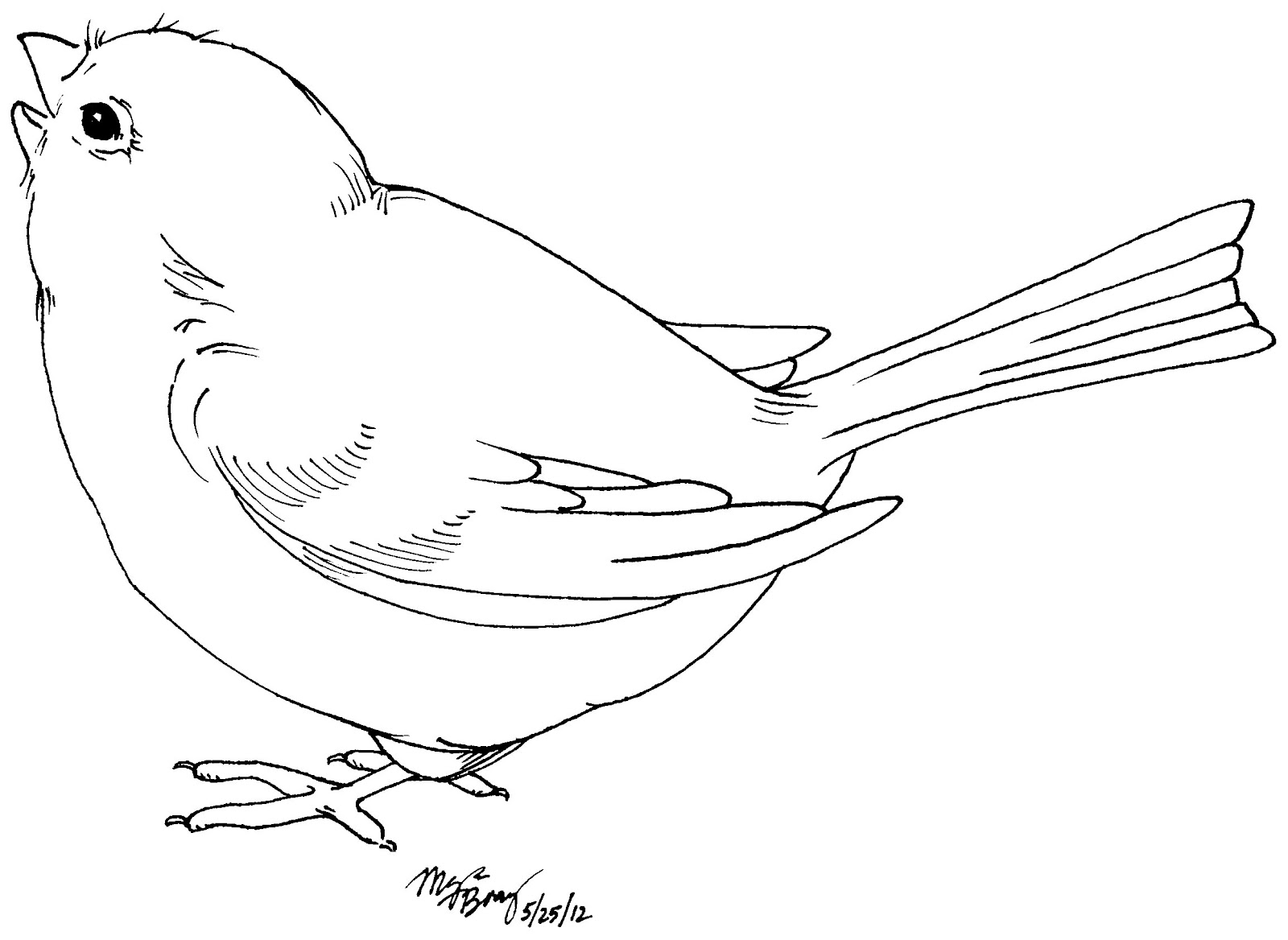 Brds clipart black and white And black hawk clipart and