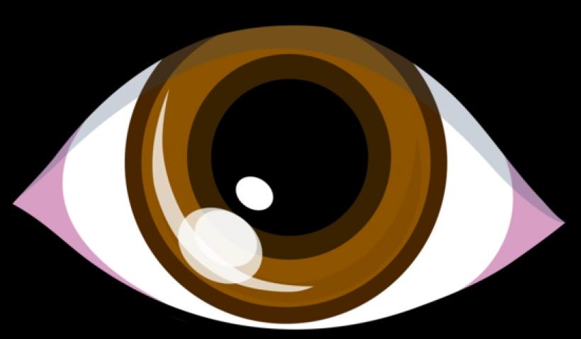 Hazel Eyes clipart Eyes clipart hazel 321 clipart