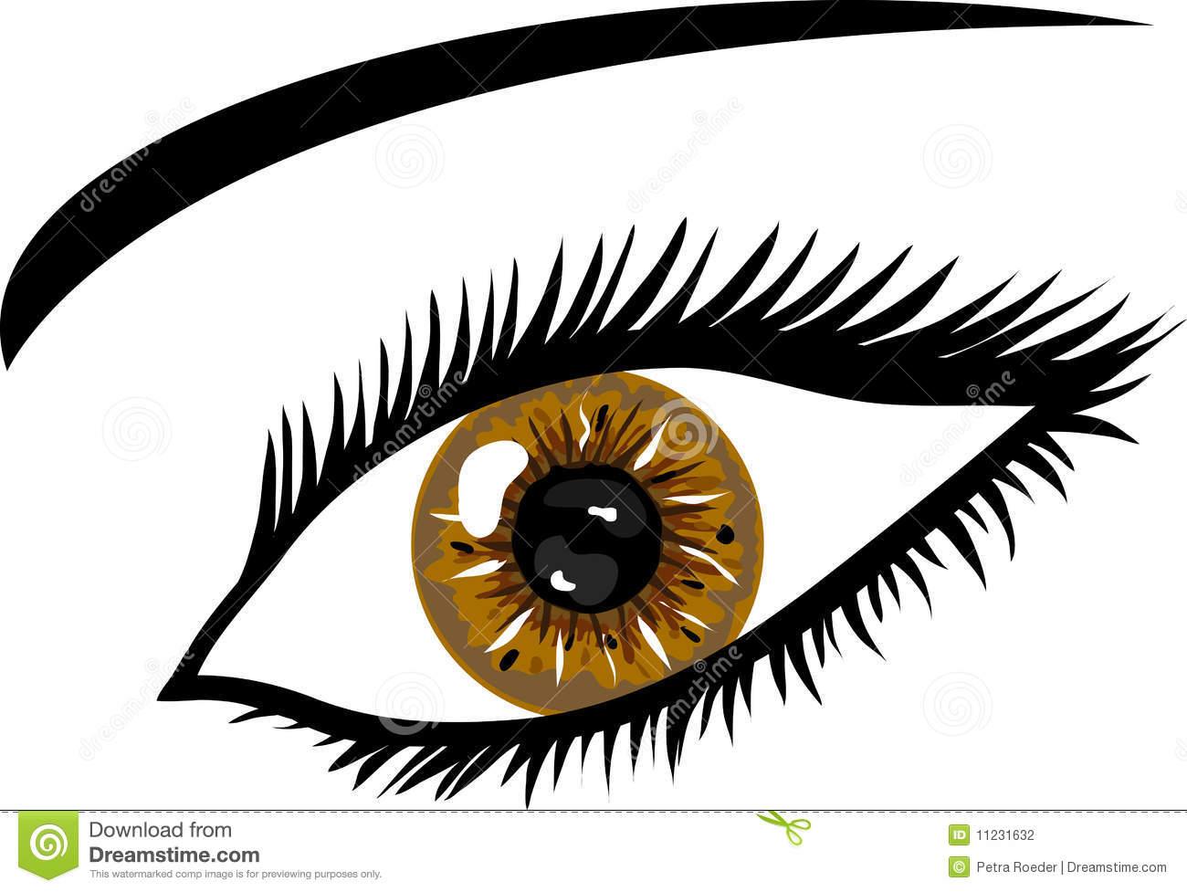 Hazel Eyes clipart Clipart eyes (1683) Free Eye