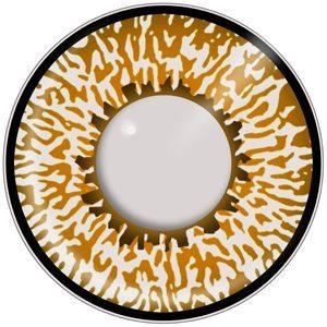 Hazel Eyes clipart vector art Lenses Tone Lenses 3 Brown