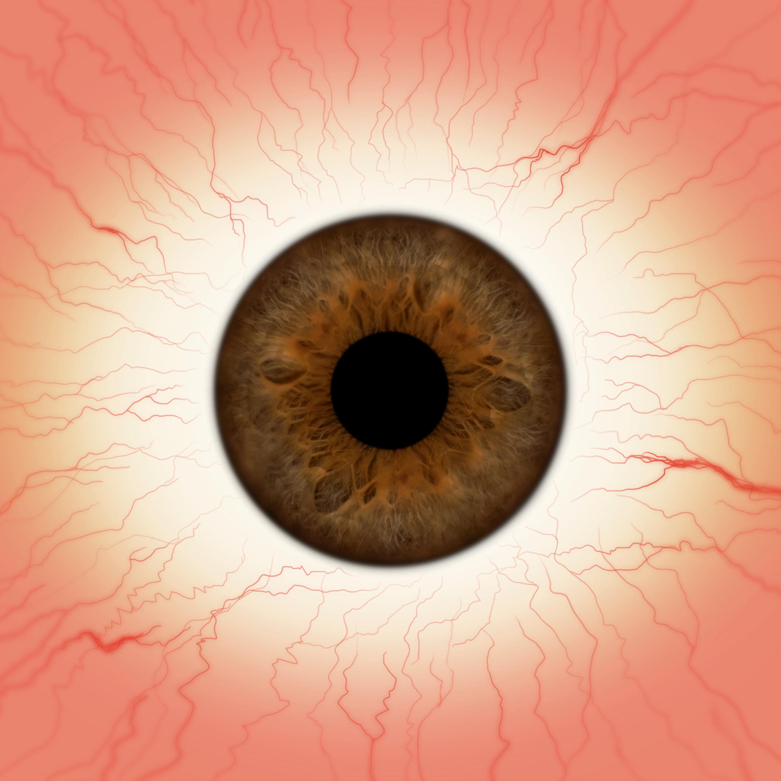 Hazel Eyes clipart brown eyeball Pinterest ZBrush eye brown eye