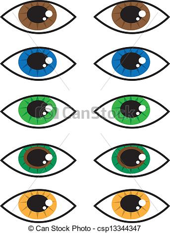 Hazel Eyes clipart brwon Hazel Colors Eyes csp13344347 Clipart
