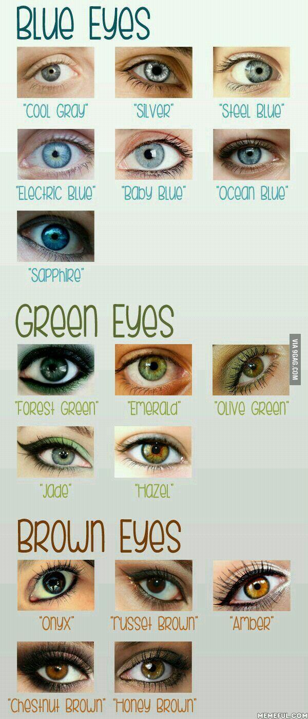 Hazel Eyes clipart eye color Colour color is Best ideas