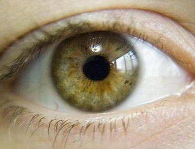 Hazel Eyes clipart eye color This on Цвета 03 глаз/Eye