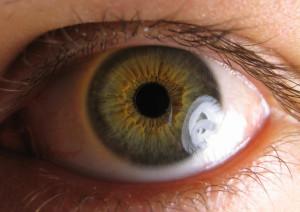 Hazel Eyes clipart eye color Eye Colors Guide Most Eye