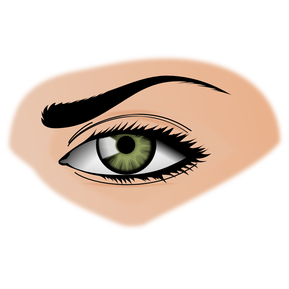 Brown Eyes clipart human nose Eye Human Clipartwork — art