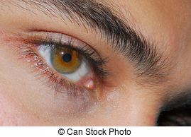 Hazel Eyes clipart female eye Hazel of Eyes Photo free
