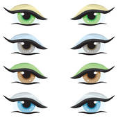 Hazel Eyes clipart female eye Different set of Clip color