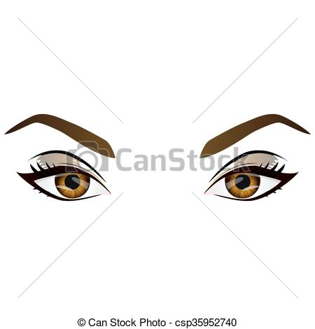 Hazel Eyes clipart graphic clipart Csp35952740 female Vector eyebrows vector