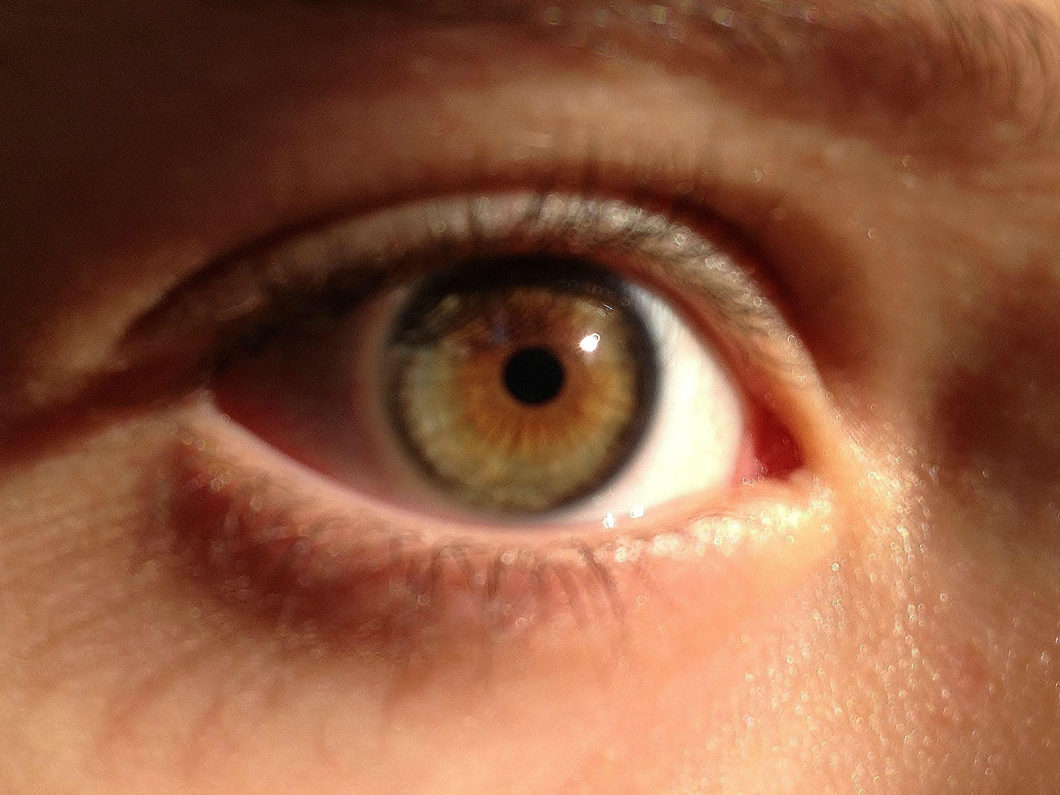 Hazel Eyes clipart grey eyes Blue eye Hazel the Eyes