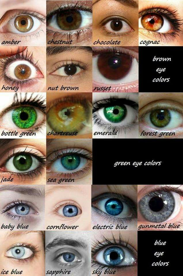 Hazel Eyes clipart grey eyes To How on this on