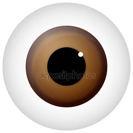 Hazel Eyes clipart pair eye Eyes Vectors Hazel Eye Royalty