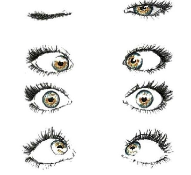Hazel Eyes clipart transparent Overlays transparent about eyes Pinterest
