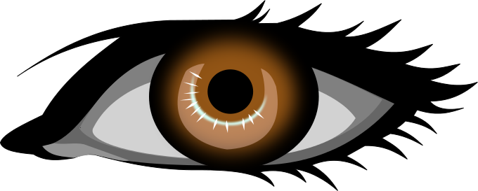 Hazel Eyes clipart two Com Free Clipart Eye Color