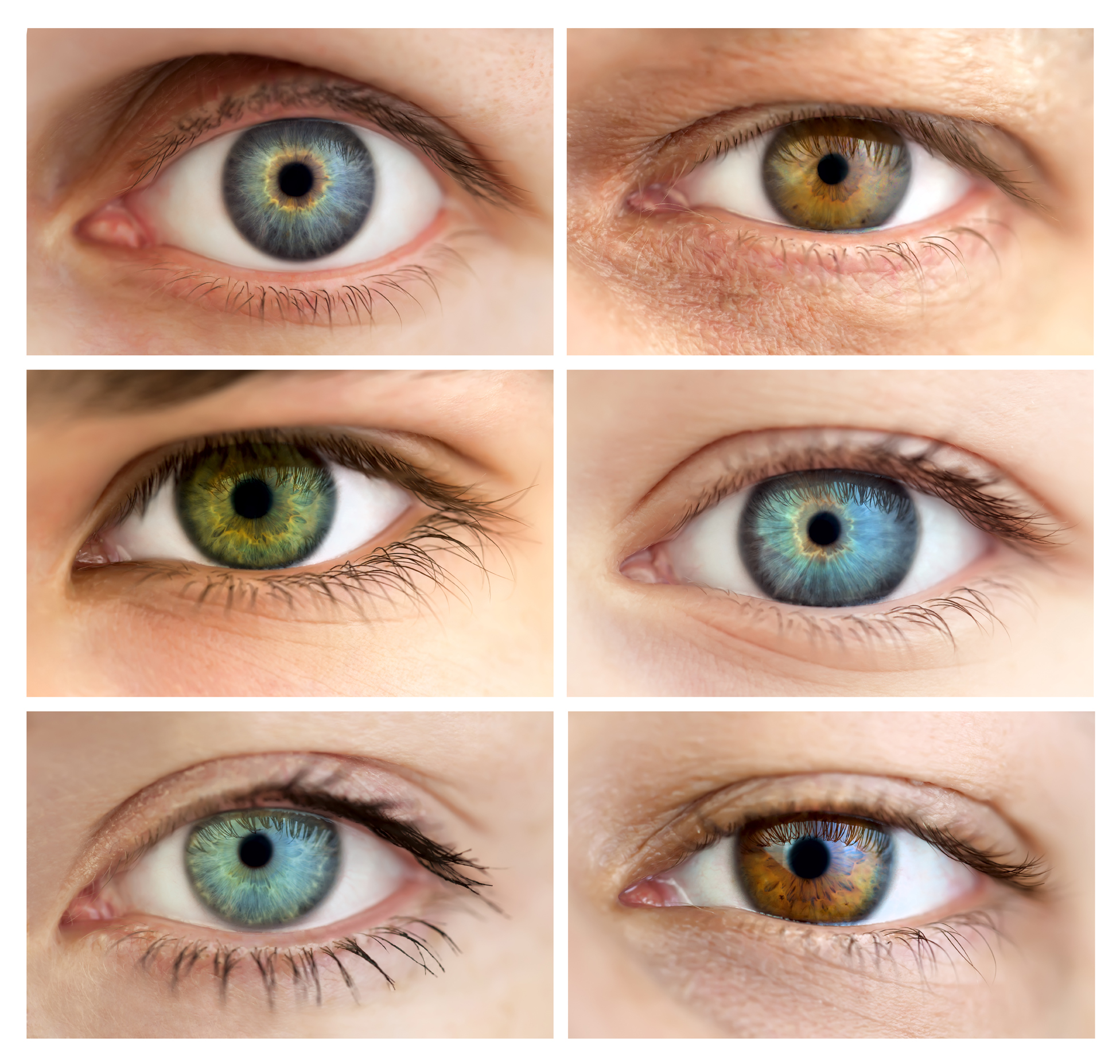 Hazel Eyes clipart two  You? What Female Fictional