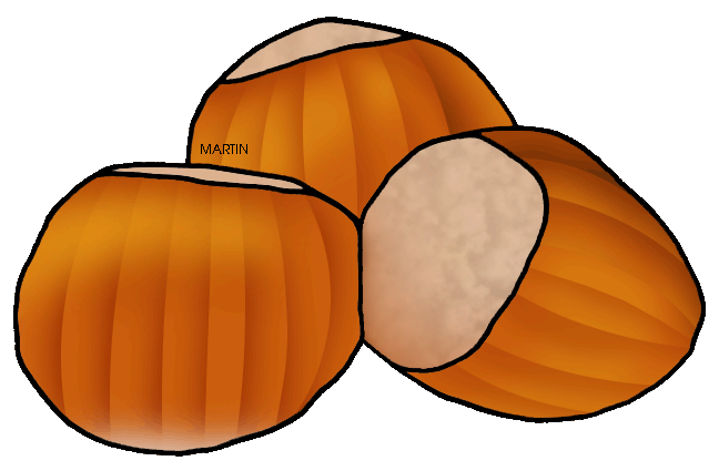Hazelnut clipart United Nut  Clip Art
