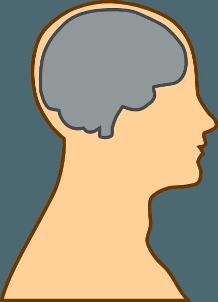 Brains clipart head clipart Brain Brain Head in head